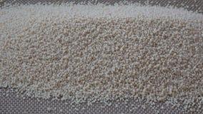 干蒸丸子堆  蒸丸子麦子粗面粉 影视素材