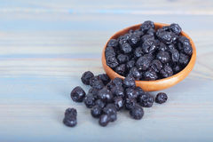 干蓝莓果子 免版税图库摄影