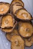 干蘑菇椎茸 图库摄影