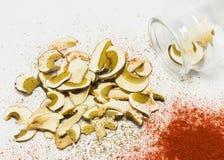 干蘑菇牛肝菌蕈类reticulatus,干红辣椒 免版税库存照片