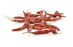 干辣椒作为食物背景 免版税库存照片