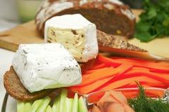 干酪不同的法国类型 库存照片