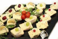 干酪不同的盛肉盘类型 免版税库存图片