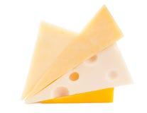 干酪不同的类型 免版税库存照片