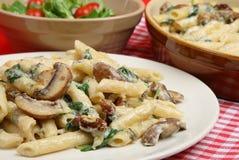 干酪佛罗伦丁的四意大利面食 免版税库存图片