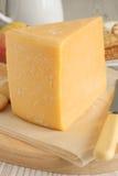 干酪双格洛斯特 库存图片