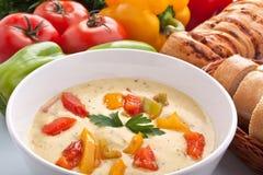 干酪和蔬菜奶油色汤服务  图库摄影