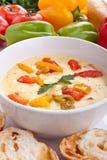 干酪和蔬菜奶油色汤服务  库存图片
