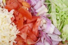 干酪把蔬菜切成小方块 图库摄影