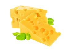 干酪查出的部分白色 库存照片