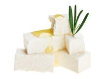 干酪求下落希脂乳油迷迭香枝杈的立&# 免版税库存照片