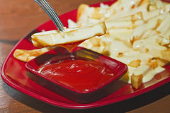 干酪油煎saurce特殊蕃茄 免版税库存图片