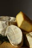 干酪法国外皮选择 库存图片