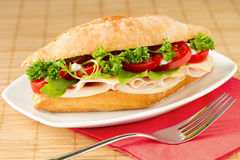 干酪火腿三明治 图库摄影