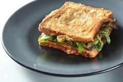 干酪烤火腿三明治 库存图片