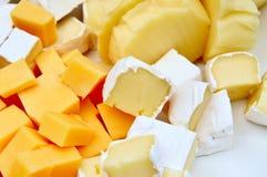 干酪片多种 免版税图库摄影