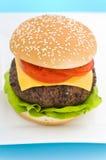 干酪经典汉堡包沙拉蕃茄 库存照片