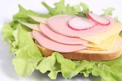 干酪绿叶火腿萝卜三明治 库存图片