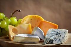 干酪键入多种 免版税库存照片