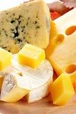 干酪黄色 库存图片