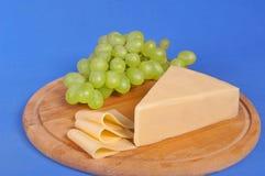 干酪黄色 库存照片