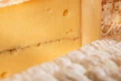 干酪 库存照片