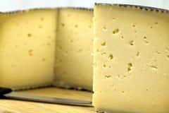 干酪manchego 库存照片