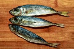 干金枪鱼是银色的在三个片断在从竹子的委员会的颜色 免版税库存照片
