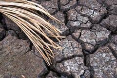 干陆,世界灾害,破裂的地面背景 免版税图库摄影