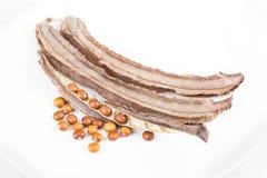干飞过的豆种子和豆荚在白色盘 免版税库存图片