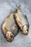 干鱼在桌河鱼说谎 免版税库存照片