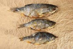 干鱼快餐 图库摄影