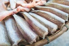 干鱼 免版税库存照片