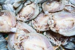 干鱼 免版税库存图片