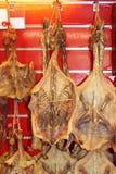 干鸭子食物 免版税库存照片