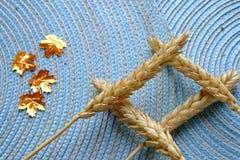 干麦子和金黄叶子风景 免版税库存照片