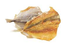 干黄色条纹trevally鱼 库存图片