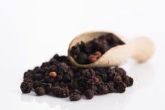 干schisandra中华的果子 免版税库存照片