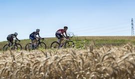 平原的三个骑自行车者-环法自行车赛2016年 免版税库存照片