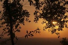 平原的橙色日落从Bakheng Wat的与树剪影在前景离开 库存照片