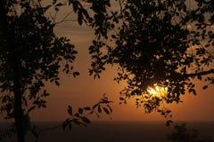 平原的橙色日落从Bakheng Wat的与树剪影在前景离开 免版税库存照片
