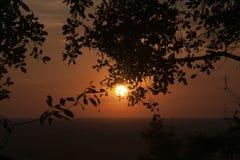 平原的橙色日落从Bakheng Wat的与树枝剪影在前景的 免版税库存照片