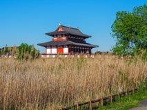 平城宫,奈良 免版税库存照片