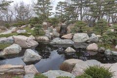 平安和安静的池塘 免版税图库摄影