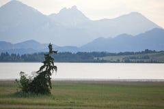 平安湖的山 库存照片