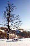 平安的安排多雪的冬天 免版税库存图片