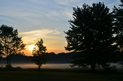 平安的早晨日出通过树&雾 库存图片