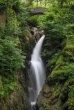 平安的森林地流动的瀑布在湖区 免版税库存照片