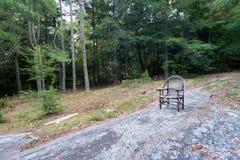 平安的椅子在森林 库存图片