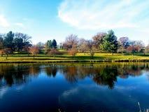 平安的池塘 免版税库存图片